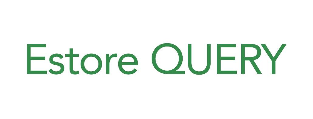顧客とOne to Oneの関係構築を促進させる<br>メールマーケティング「Eストアークエリー」を提供開始